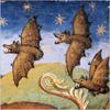 phoebe_zeitgeist: (flyingdragons)