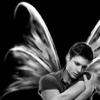 loosair: (Angel Dean, dean angel)