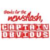 naughtyelf: (Angel - thanks for the newsflash)