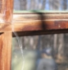 sapote: the wooden crossbar of a glass window, with a cobweb on it, outdoors. (chapel hill)
