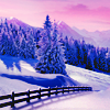 kay_brooke: Snowy landscape with a fence, an evergreen forest, and a pink sky (winter)