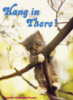 "rikibeth: the classic 1970s poster of a kitten hanging from a tree branch captioned ""Hang In There."" (hang in there)"