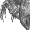 therizinosaur: (Default)