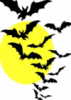 nugatorytm: A group of bats flying against a yellow moon. (flyingbatz)