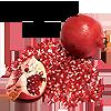 sofiaviolet: pomegranates and text: I planted a seed (seed)