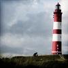 tadeusz: (Radiant Shadows - Lighthouse)