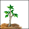 antreegonist: Mithos: symbolic/World Tree sapling (a dream deferred.)