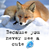 blnchflr: Firefox - because you never saw a cute IE (Because you never see a cute IE)