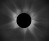 dodont: (eclipse)