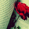 awriternow: (001. rose in book)