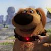 dug_the_dog: (:D)