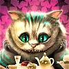 kamisha: (cat)