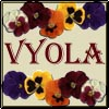 "ladyvyola: caption ""Vyola"" between two rows of pansies (vyola is an old-fashioned girl)"