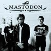 mastodon: (by sierra.dw)