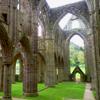 archaeologist_d: (Tintern Abbey)