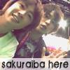 arashic0804: (sakuraiba here)