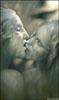 zvery: (kiss)
