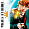 wild_dreamer: (HP - Weasley is our king)