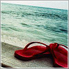 beachlass: red flipflops by water (red flipflops, sandals)