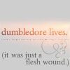 lizzardgirl: (dumbledorefleshwound)