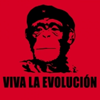 "sylleptic: Red icon with a picture of chimp in the style of the famous Che image, text ""Viva la evolucion"" (science; evolution; che)"