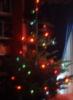 ailbhe: (christmas)