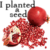 "rhi: A full pomegranate, a half pomegranate, and a pouring of seeds.  ""I planted a seed."" (seed)"