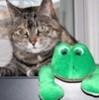 revchris: (marley frog)
