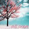 pegkerr: (cherry tree still sweet)