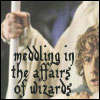 mayhap: Pippin clutched in Gandalf's arm with text meddling in the affairs of wizards (meddling in the affairs of wizards)