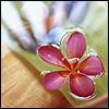 alegriagraciela: (floating flower)