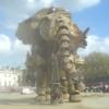 akicif: (Elephant)