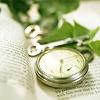 deputy_in_a_bonnet: (green, time)