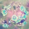 muffinbutton: (Blue Flowers)
