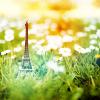 muffinbutton: (Little Paris)