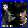 morgandawn: (Supernatural Brothers)