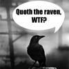 theantijoss: (Misc - Quoth the raven WTF?)