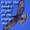 "redbird: A bird, soaring, with the text ""bright the hawk's flight on the empty sky,"" text and photo (hawk, bright the hawk's flight)"