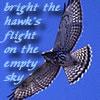 "redbird: ""bright the hawk's flight on the empty sky,"" text and photo (hawk, bright the hawk's flight)"