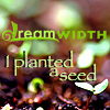 magycmyste: Text: dreamwidth I planted a seed (planted seed DW)