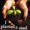 magycmyste: Text: I planted a seed (planted seed hands)