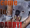 dorchadas: (Drop Bear)
