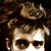 telegramsam: Blixa Bargeld with a bird in his hair (blixa)