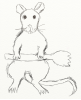 sporky_rat: A rat sitting on its haunches holding a spork (the one and only sporky rat of sporky ra)
