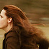summer_skin: (Twilight- (New Moon) Run Bella's hair! R)