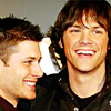 yami_tai: Jensen & Jared smiling (lierina jensen&jared)
