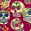 skeletons: (dia de los muertos)