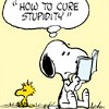 catscradle: (Snoopy)