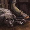 grimmauldhound: (Padfoot - sleepless nights)
