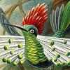 keaalu: A hummingbird (Haeckel birdie)